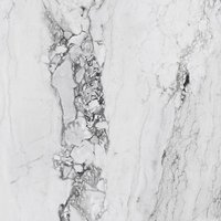 medicea marble Marble High glossy Gres porcelain 120x120cm Domestic Purpose Light Commercial Traffic Area