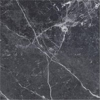 maximus blu del belgio Marble High glossy Gres porcelain 120x120cm Domestic Purpose Light Commercial Traffic Area